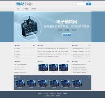 蓝白色电子网站设计D