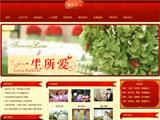 婚庆摄影公司红色网站