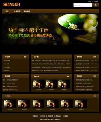棕黑色陶瓷网站设计G